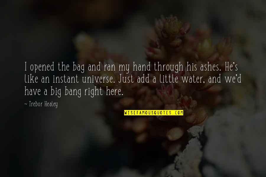 Big Bang Quotes By Trebor Healey: I opened the bag and ran my hand