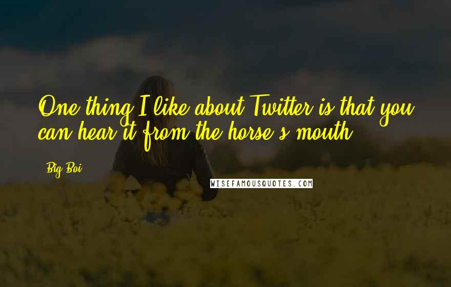 Big Boi quotes: One thing I like about Twitter is that you can hear it from the horse's mouth.
