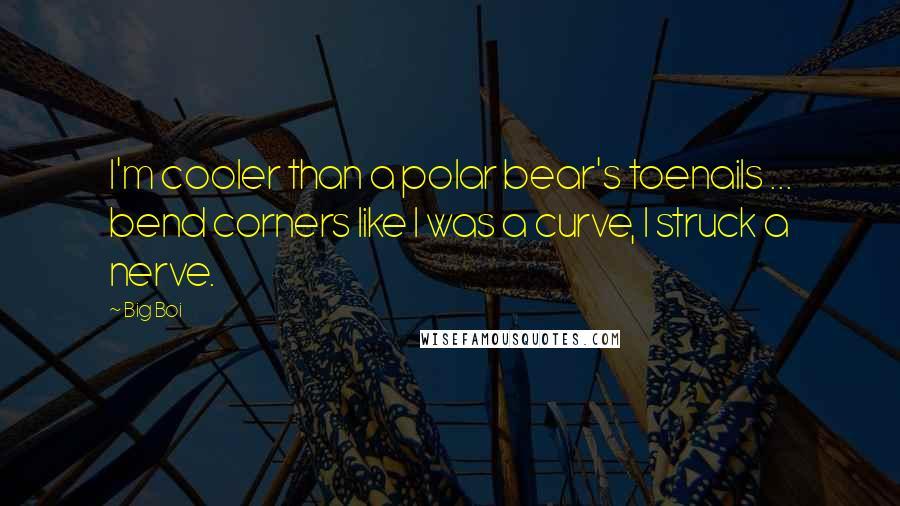 Big Boi quotes: I'm cooler than a polar bear's toenails ... bend corners like I was a curve, I struck a nerve.