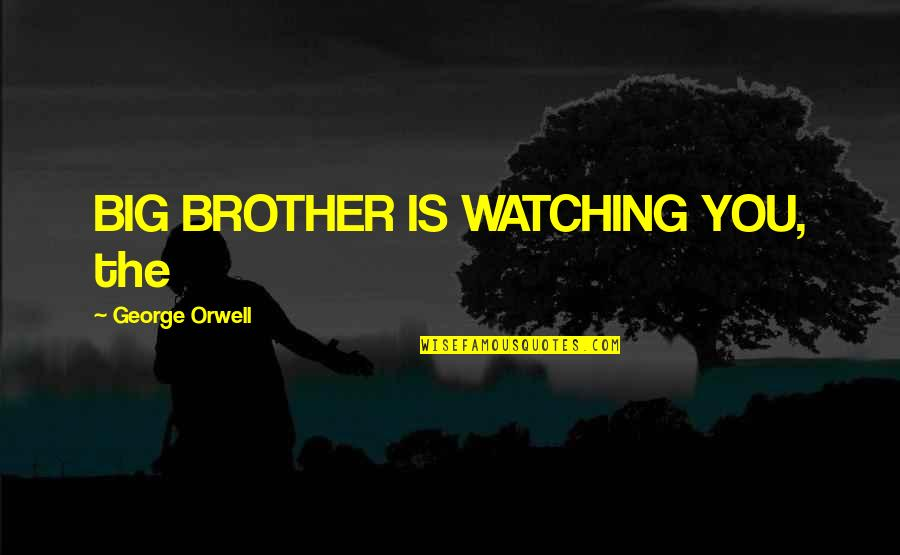 Big Brother Quotes By George Orwell: BIG BROTHER IS WATCHING YOU, the