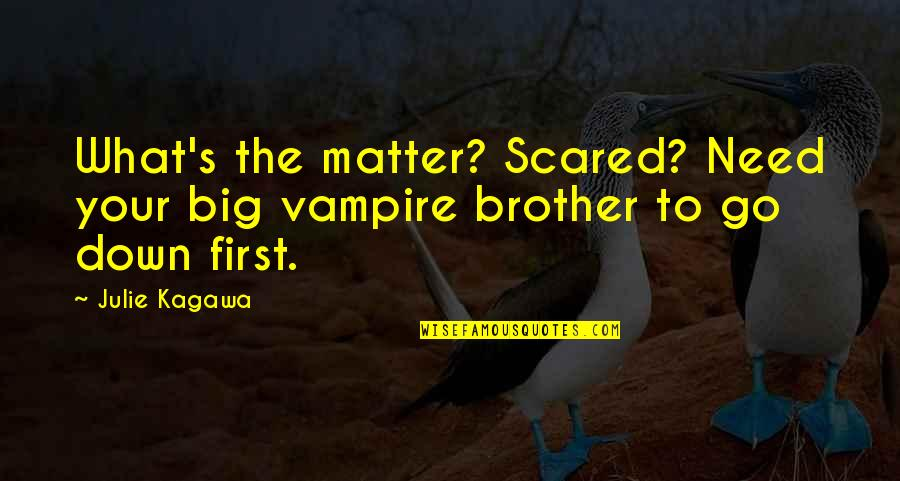 Big Brother Quotes By Julie Kagawa: What's the matter? Scared? Need your big vampire