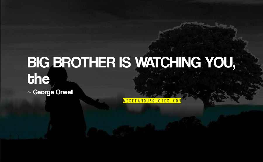 Big Brother Watching You Quotes By George Orwell: BIG BROTHER IS WATCHING YOU, the