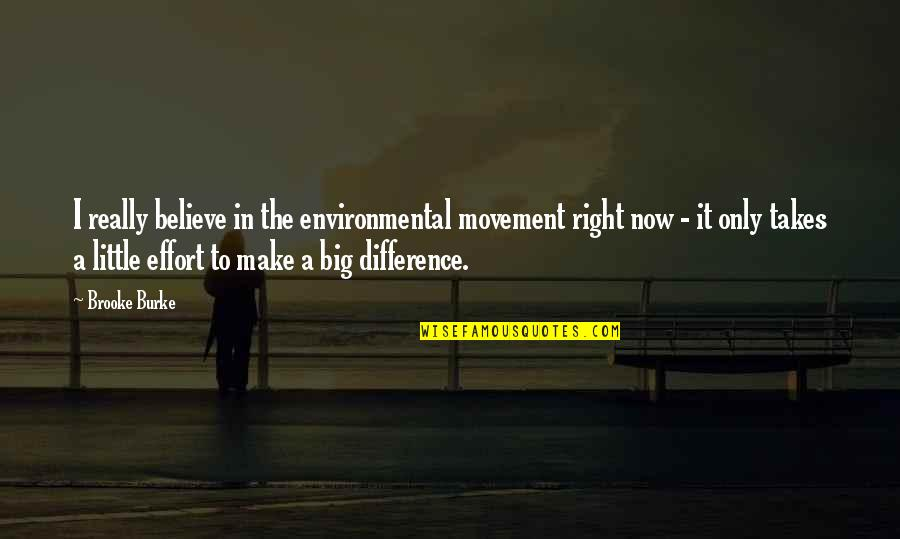 Big Effort Quotes By Brooke Burke: I really believe in the environmental movement right