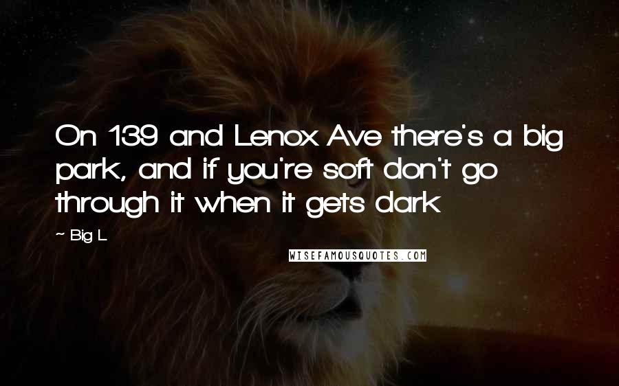 Big L quotes: On 139 and Lenox Ave there's a big park, and if you're soft don't go through it when it gets dark