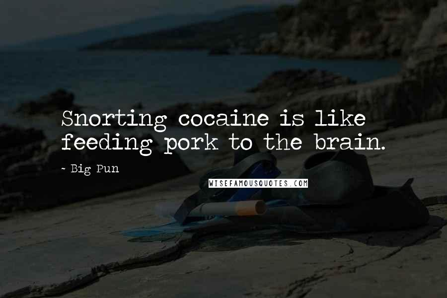 Big Pun quotes: Snorting cocaine is like feeding pork to the brain.