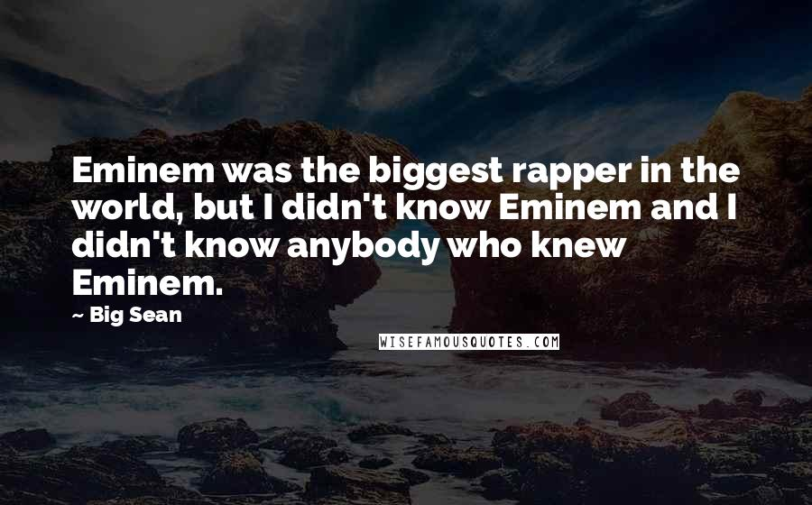 Big Sean quotes: Eminem was the biggest rapper in the world, but I didn't know Eminem and I didn't know anybody who knew Eminem.