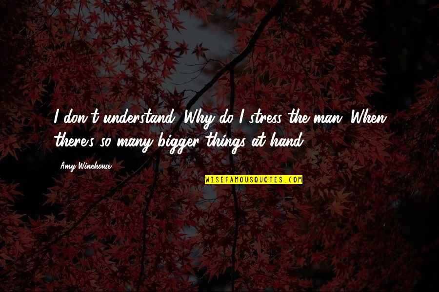 Bigger Man Quotes By Amy Winehouse: I don't understand, Why do I stress the