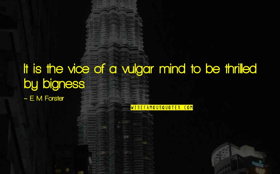 Bigness Quotes By E. M. Forster: It is the vice of a vulgar mind
