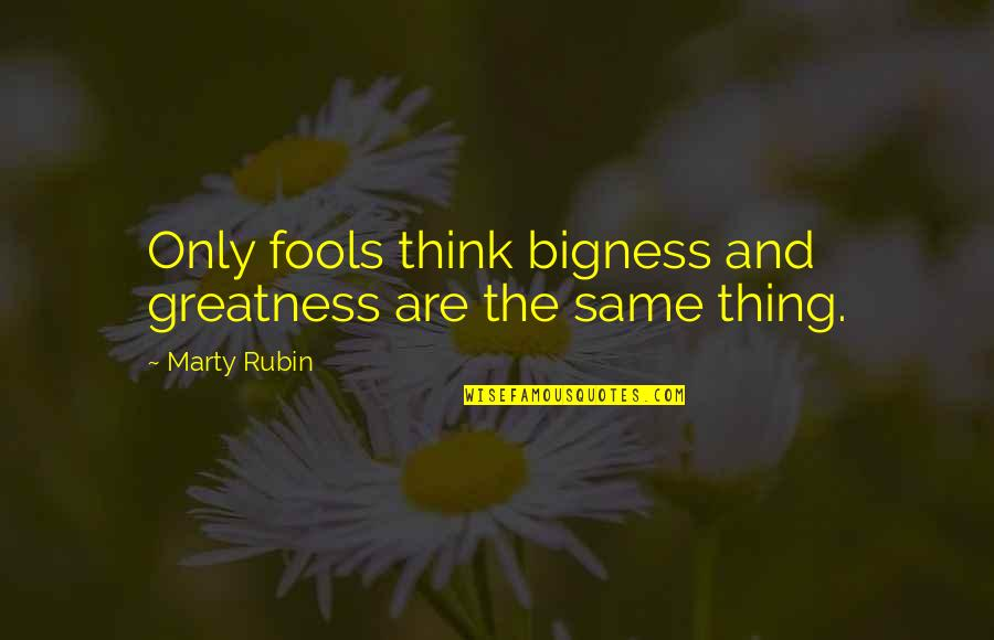 Bigness Quotes By Marty Rubin: Only fools think bigness and greatness are the