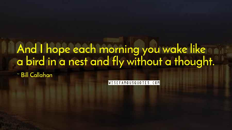 Bill Callahan quotes: And I hope each morning you wake like a bird in a nest and fly without a thought.