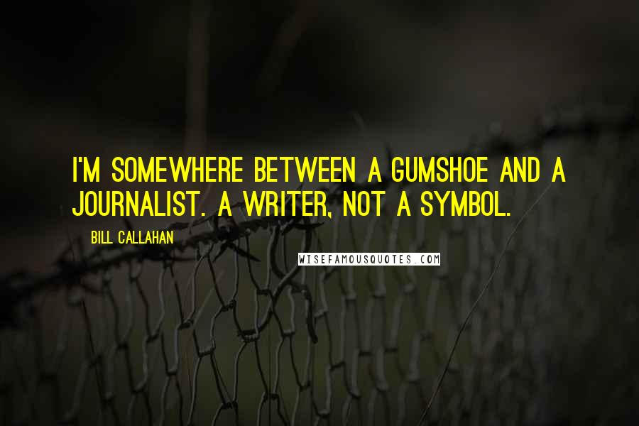 Bill Callahan quotes: I'm somewhere between a gumshoe and a journalist. A writer, not a symbol.
