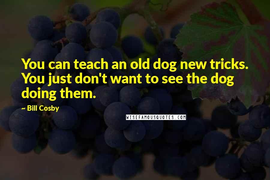 Bill Cosby quotes: You can teach an old dog new tricks. You just don't want to see the dog doing them.