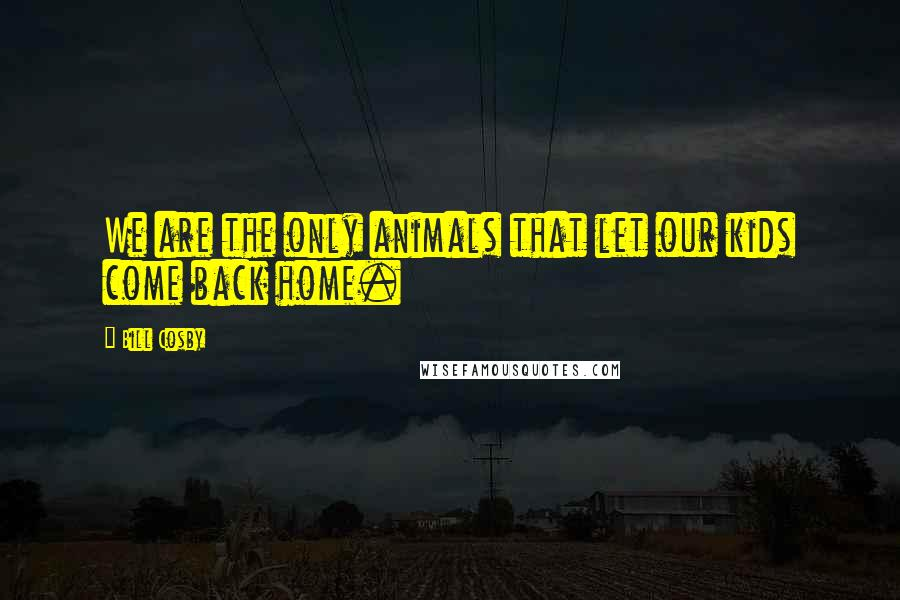 Bill Cosby quotes: We are the only animals that let our kids come back home.