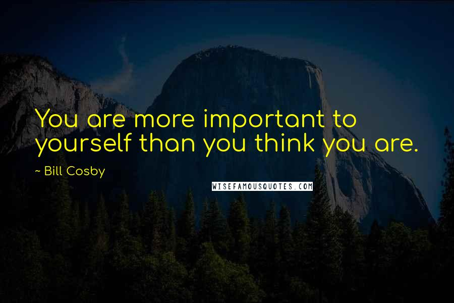Bill Cosby quotes: You are more important to yourself than you think you are.