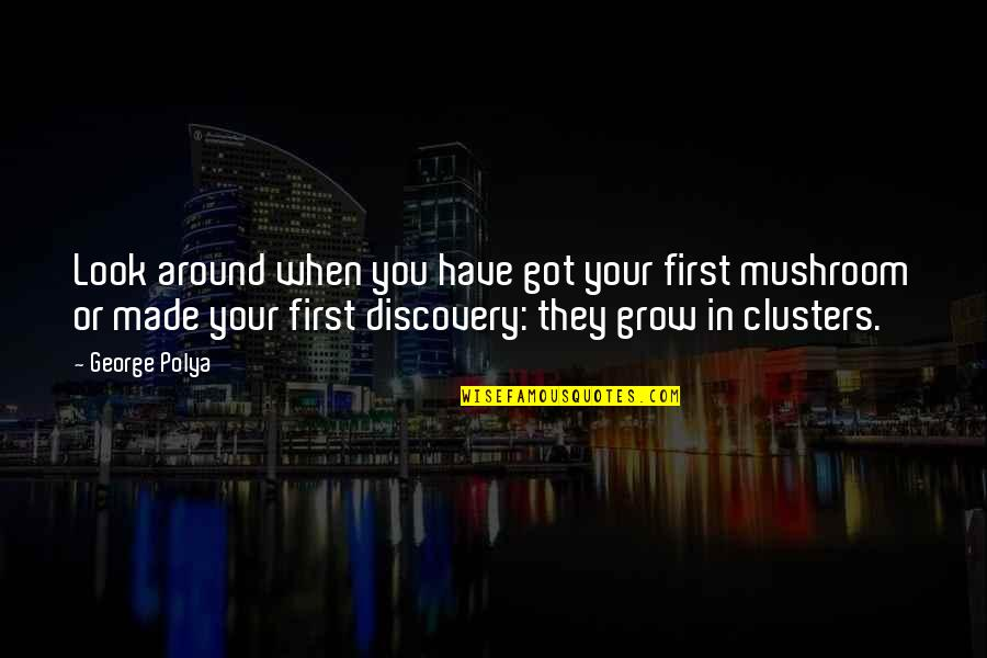 Bill Denbrough Quotes By George Polya: Look around when you have got your first