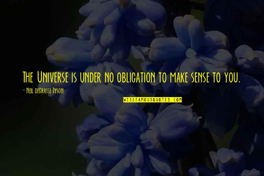 Bill Denbrough Quotes By Neil DeGrasse Tyson: The Universe is under no obligation to make