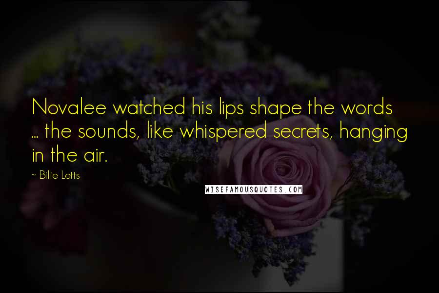 Billie Letts quotes: Novalee watched his lips shape the words ... the sounds, like whispered secrets, hanging in the air.