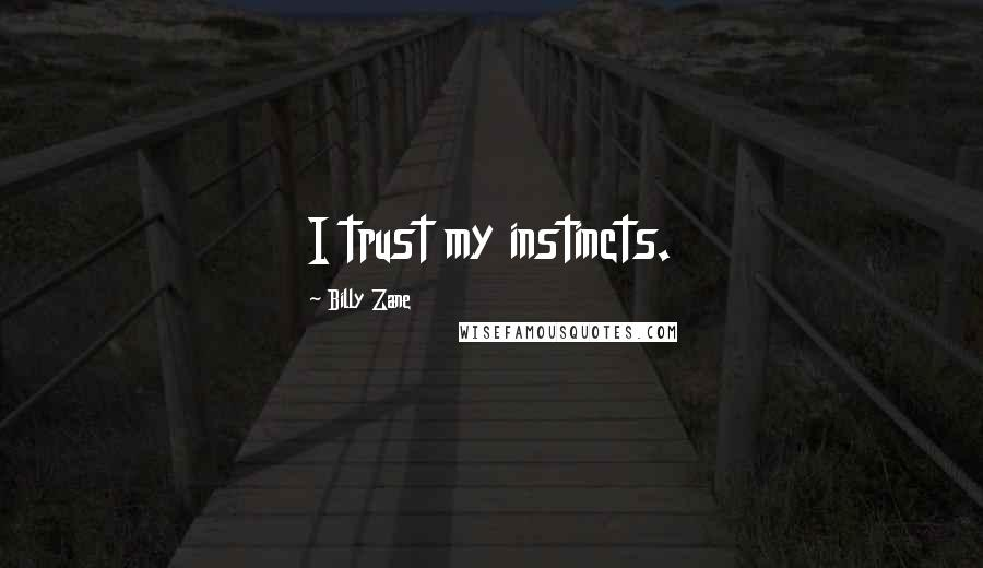 Billy Zane quotes: I trust my instincts.