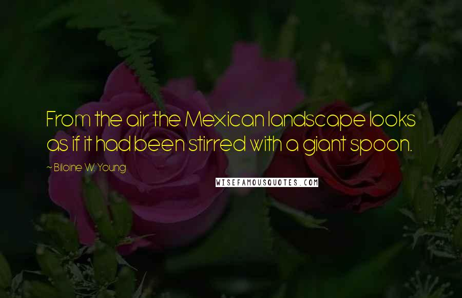 Biloine W. Young quotes: From the air the Mexican landscape looks as if it had been stirred with a giant spoon.
