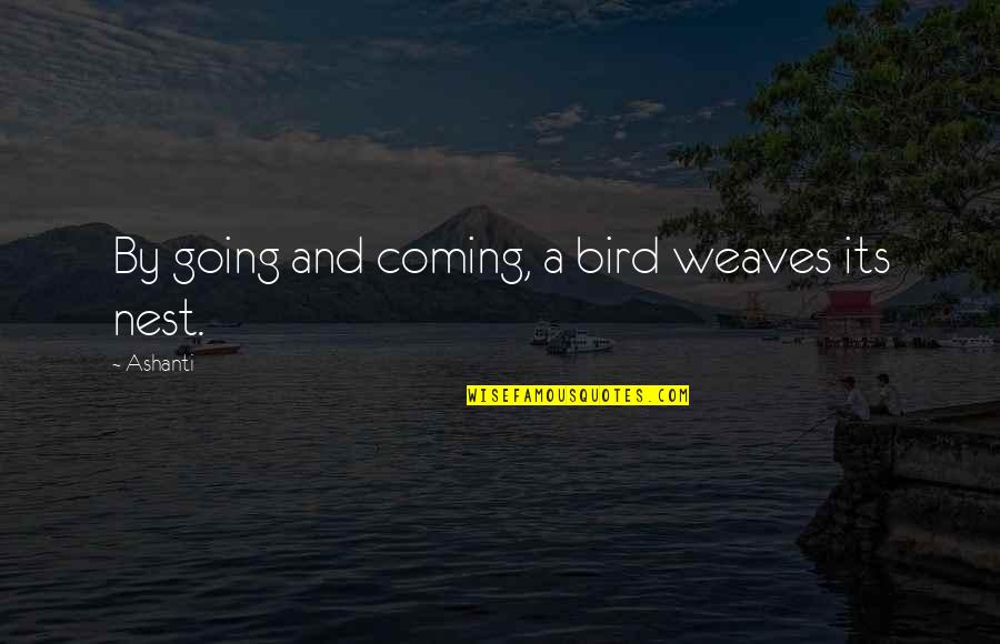 Bird Nests Quotes By Ashanti: By going and coming, a bird weaves its