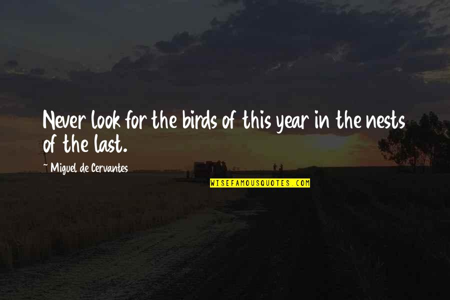 Bird Nests Quotes By Miguel De Cervantes: Never look for the birds of this year