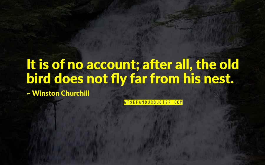 Bird Nests Quotes By Winston Churchill: It is of no account; after all, the