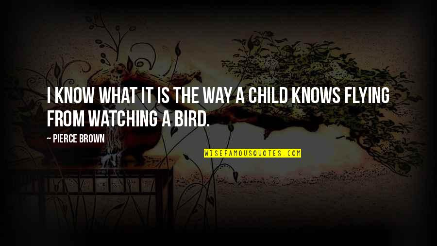 Bird Watching Quotes By Pierce Brown: I know what it is the way a