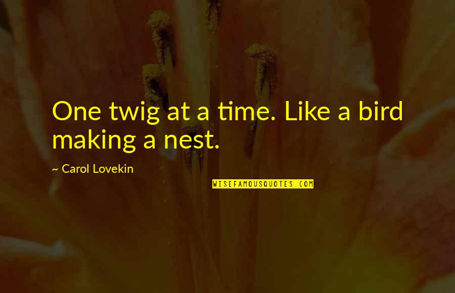 Birds And Life Quotes By Carol Lovekin: One twig at a time. Like a bird