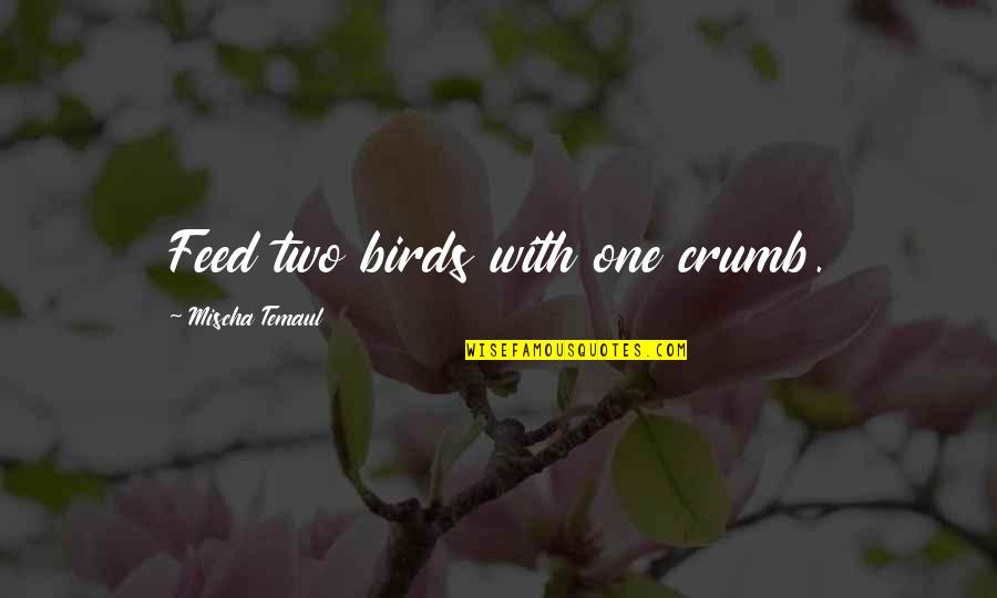 Birds And Life Quotes By Mischa Temaul: Feed two birds with one crumb.