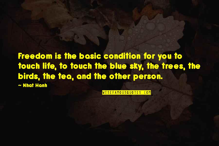Birds And Life Quotes By Nhat Hanh: Freedom is the basic condition for you to