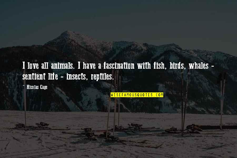 Birds And Life Quotes By Nicolas Cage: I love all animals. I have a fascination