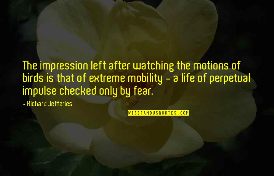 Birds And Life Quotes By Richard Jefferies: The impression left after watching the motions of