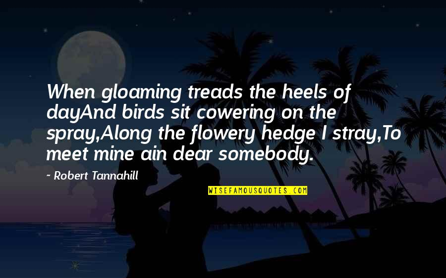 Birds And Life Quotes By Robert Tannahill: When gloaming treads the heels of dayAnd birds