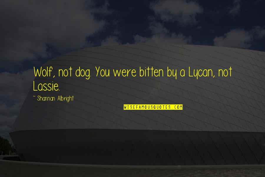Bitten Quotes By Shannan Albright: Wolf, not dog. You were bitten by a