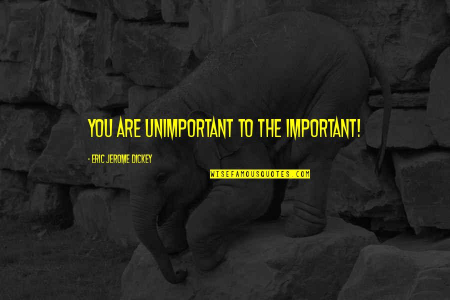 Bjj Lifestyle Quotes By Eric Jerome Dickey: you are unimportant to the important!