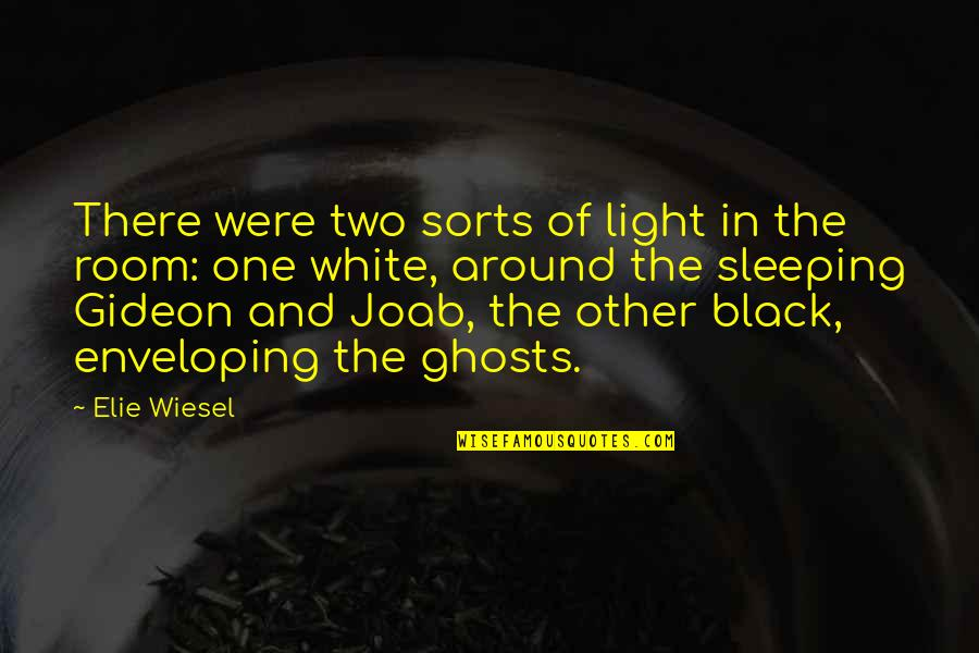 Black And White Light Quotes By Elie Wiesel: There were two sorts of light in the