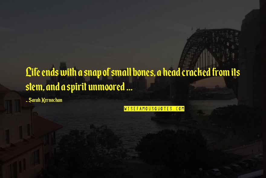 Black Ball Quotes By Sarah Kernochan: Life ends with a snap of small bones,