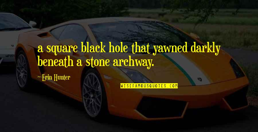 Black P Stone Quotes By Erin Hunter: a square black hole that yawned darkly beneath