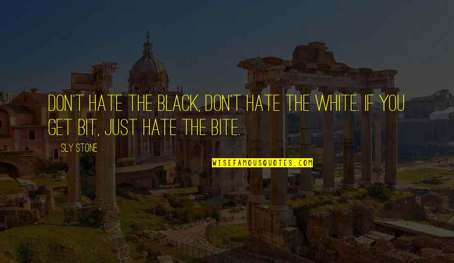 Black P Stone Quotes By Sly Stone: Don't hate the black, don't hate the white.