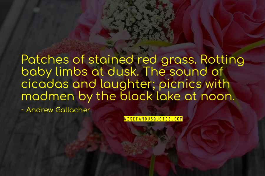 Black Red Quotes By Andrew Gallacher: Patches of stained red grass. Rotting baby limbs