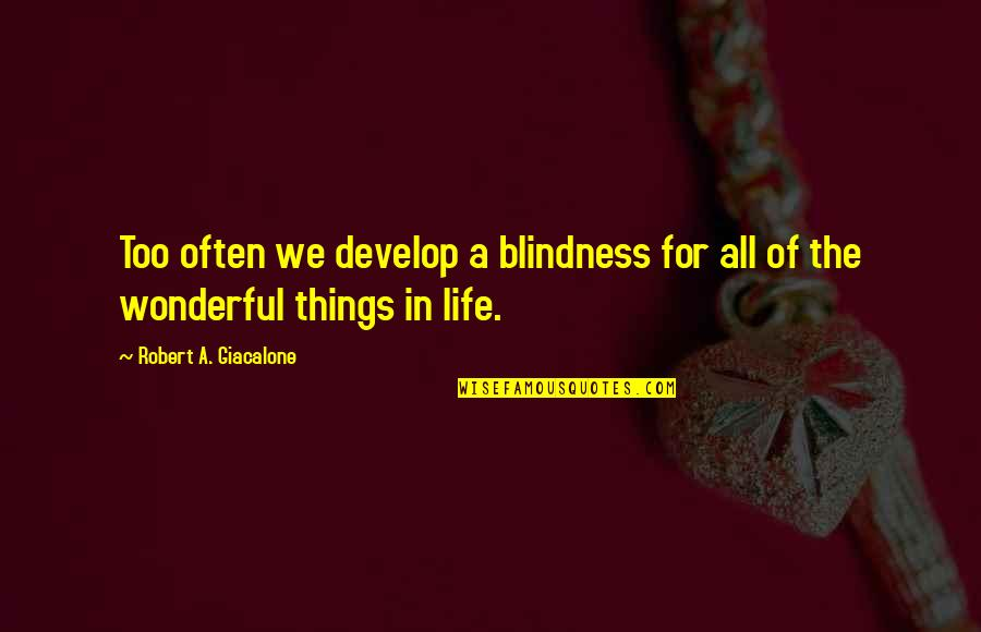 Blindness In Life Quotes By Robert A. Giacalone: Too often we develop a blindness for all