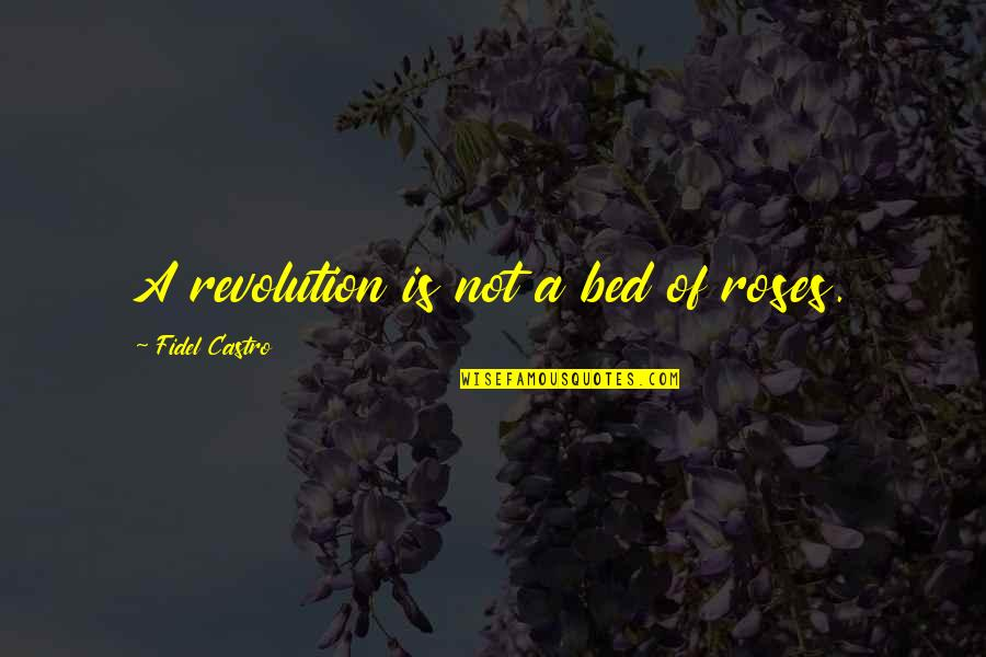 Blitzer's Quotes By Fidel Castro: A revolution is not a bed of roses.