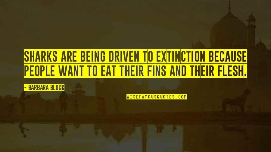 Block Quotes By Barbara Block: Sharks are being driven to extinction because people