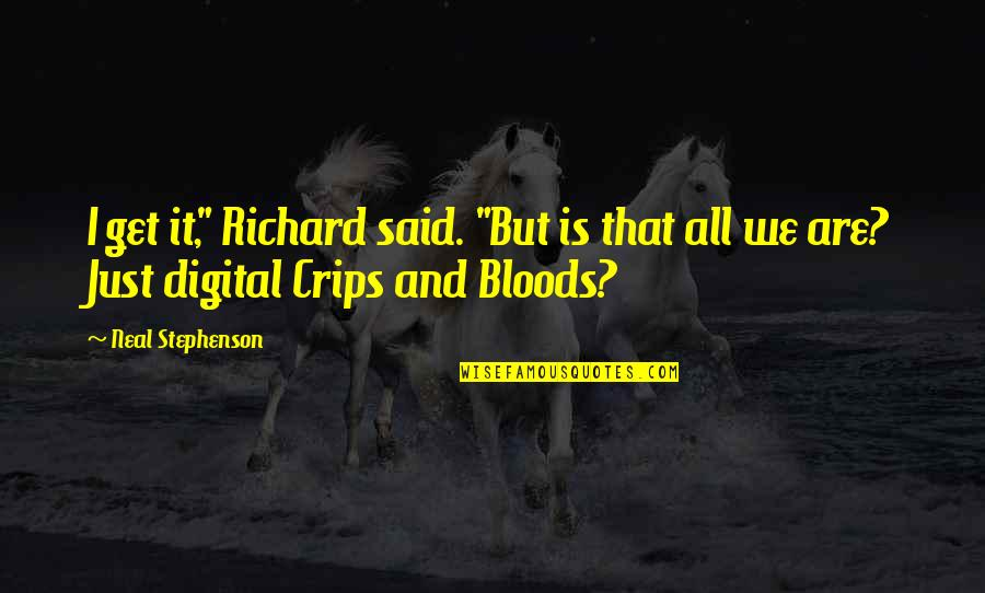 """Bloods Vs Crips Quotes By Neal Stephenson: I get it,"""" Richard said. """"But is that"""