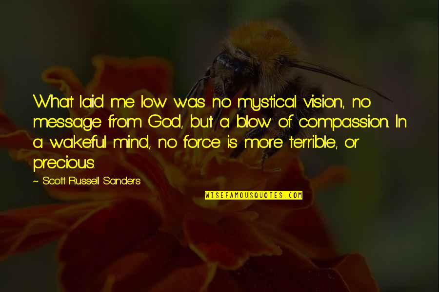 Blow My Mind Quotes By Scott Russell Sanders: What laid me low was no mystical vision,