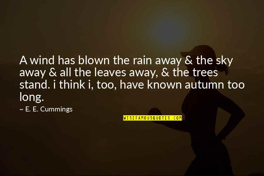 Blown Away Quotes By E. E. Cummings: A wind has blown the rain away &
