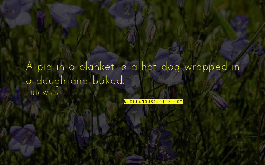 Boaster Quotes By N.D. Wilson: A pig in a blanket is a hot