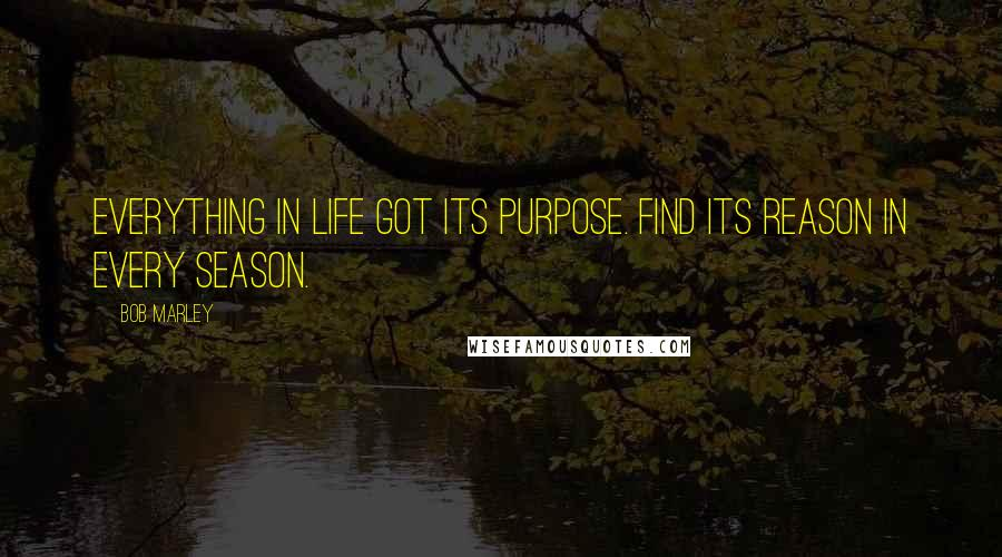 Bob Marley quotes: Everything in life got its purpose. Find its reason in every season.