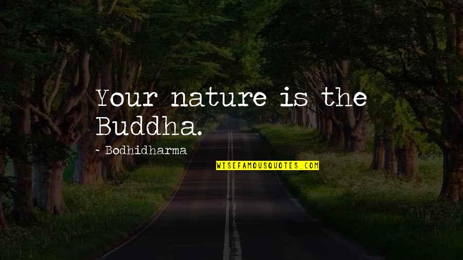 Bodhidharma's Quotes By Bodhidharma: Your nature is the Buddha.