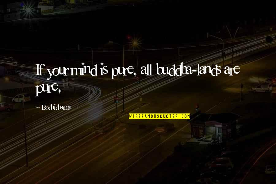 Bodhidharma's Quotes By Bodhidharma: If your mind is pure, all buddha-lands are